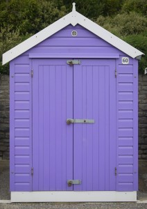 Purple Painted Shed
