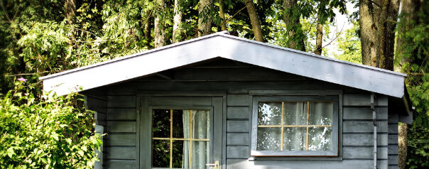shed in the woods roof